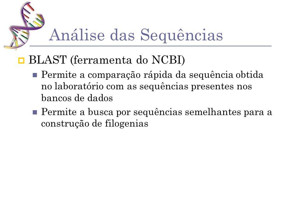 Análise das Sequências BLAST (ferramenta do NCBI) Permite a comparação rápida da sequência obtida no laboratório com as sequências presentes nos banco