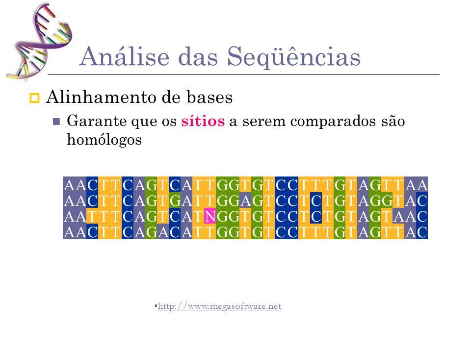 Análise das Seqüências Alinhamento de bases Garante que os sítios a serem comparados são homólogos http://www.megasoftware.net