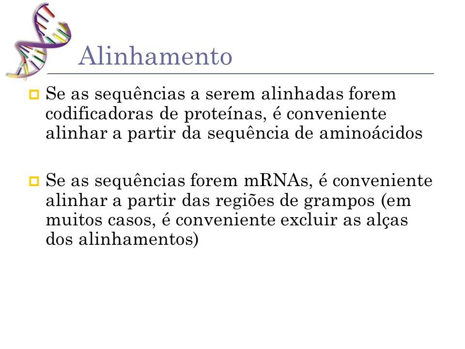 Se as sequências a serem alinhadas forem codificadoras de proteínas, é conveniente alinhar a partir da sequência de aminoácidos Se as sequências forem