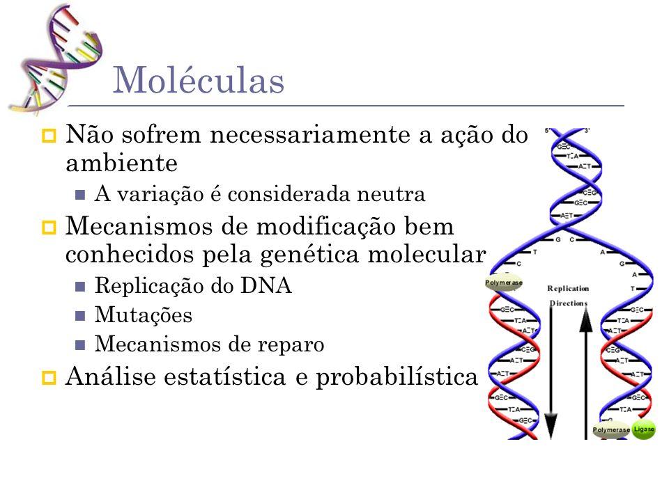 Moléculas Não sofrem necessariamente a ação do ambiente A variação é considerada neutra Mecanismos de modificação bem conhecidos pela genética molecul
