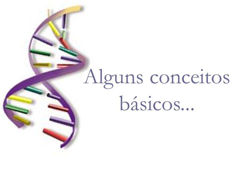 5 - Duplicação Gênica Aumento da quantidade de genes nas células Frequente formação de pseudo-genes (genes que foram desligados) Leva à construção de árvores de genes, e não de espécies...