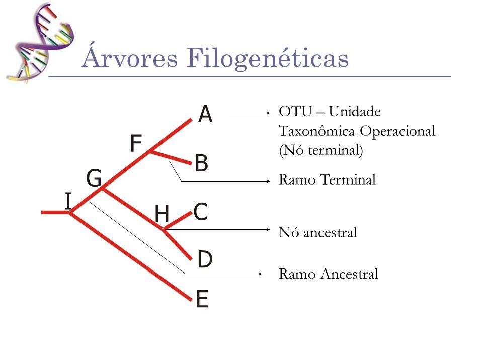 Árvores Filogenéticas A B B D D E F G H I E C C A 1 unidade Tempo 2 1 1 6 2 2 3 2