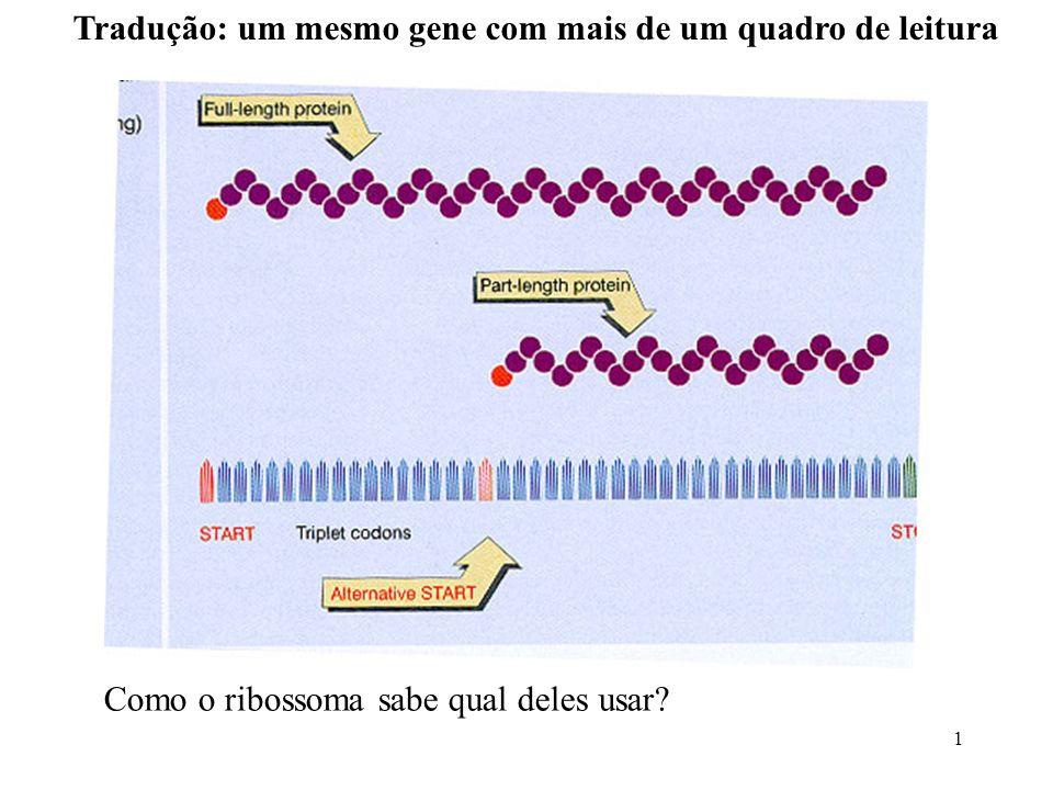1 Tradução: um mesmo gene com mais de um quadro de leitura Como o ribossoma sabe qual deles usar?