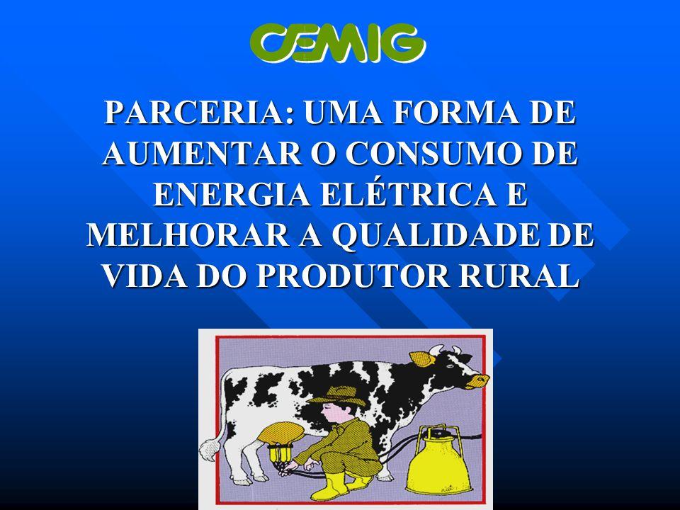 PARCERIA: UMA FORMA DE AUMENTAR O CONSUMO DE ENERGIA ELÉTRICA E MELHORAR A QUALIDADE DE VIDA DO PRODUTOR RURAL