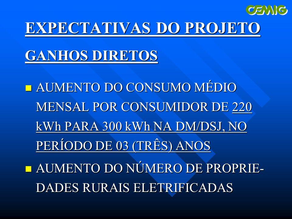 EXPECTATIVAS DO PROJETO GANHOS DIRETOS n AUMENTO DO CONSUMO MÉDIO MENSAL POR CONSUMIDOR DE 220 kWh PARA 300 kWh NA DM/DSJ, NO PERÍODO DE 03 (TRÊS) ANOS n AUMENTO DO NÚMERO DE PROPRIE- DADES RURAIS ELETRIFICADAS