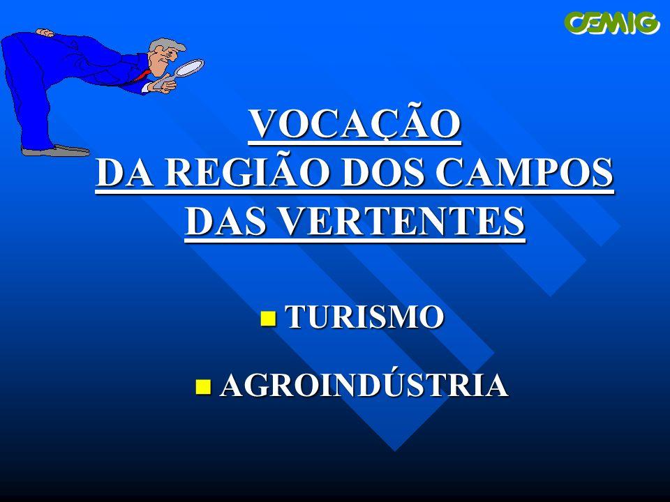 VOCAÇÃO DA REGIÃO DOS CAMPOS DAS VERTENTES n TURISMO n AGROINDÚSTRIA