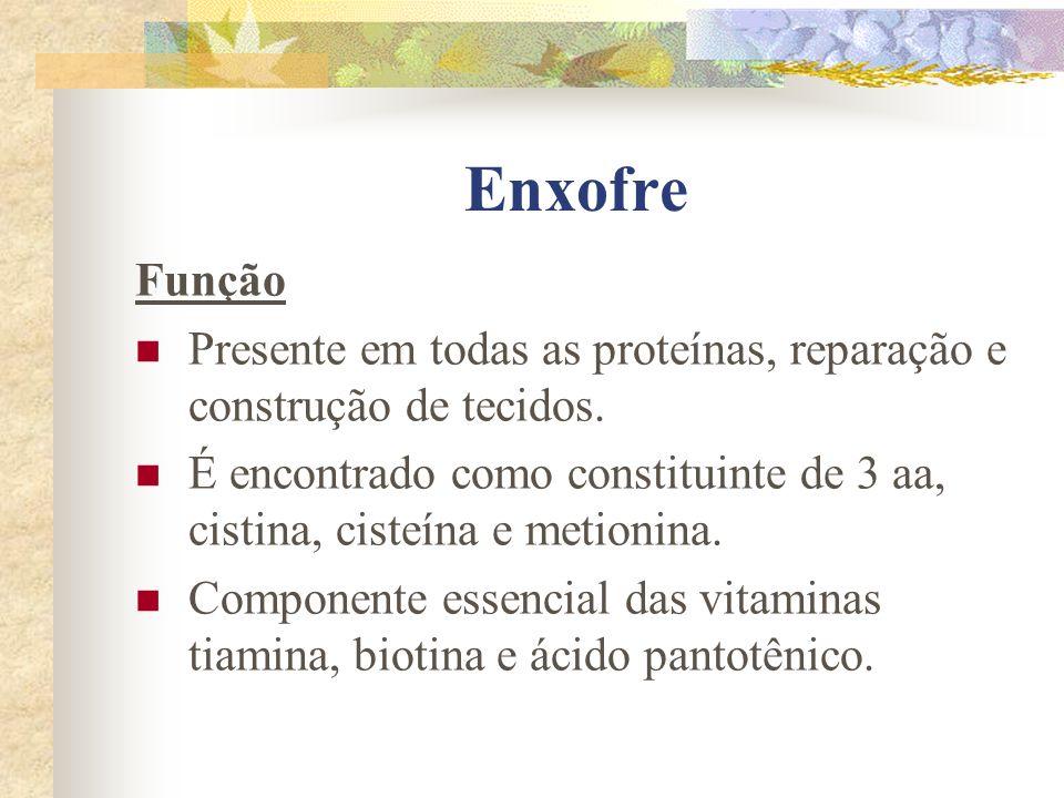 Enxofre Função Presente em todas as proteínas, reparação e construção de tecidos. É encontrado como constituinte de 3 aa, cistina, cisteína e metionin
