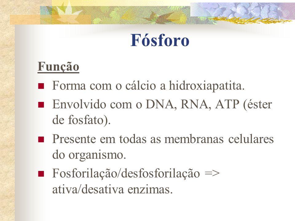 Fósforo Função Forma com o cálcio a hidroxiapatita. Envolvido com o DNA, RNA, ATP (éster de fosfato). Presente em todas as membranas celulares do orga