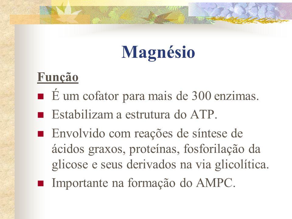 Magnésio Função É um cofator para mais de 300 enzimas. Estabilizam a estrutura do ATP. Envolvido com reações de síntese de ácidos graxos, proteínas, f