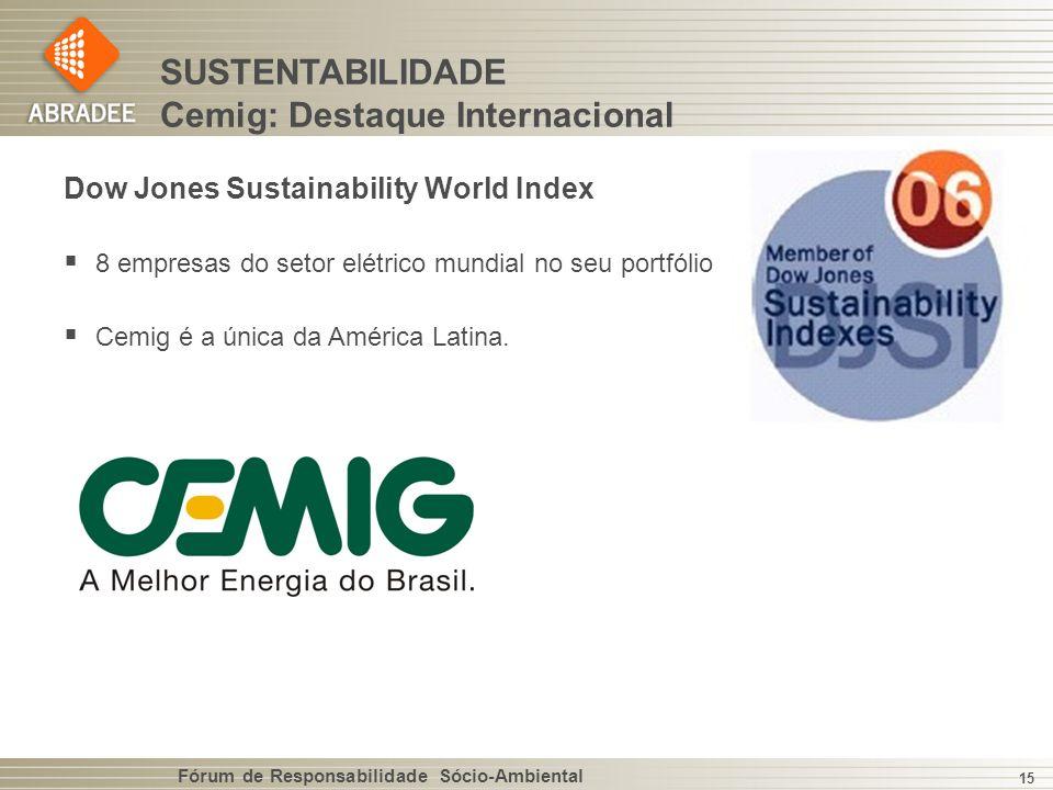 Fórum de Responsabilidade Sócio-Ambiental 15 Dow Jones Sustainability World Index 8 empresas do setor elétrico mundial no seu portfólio Cemig é a única da América Latina.