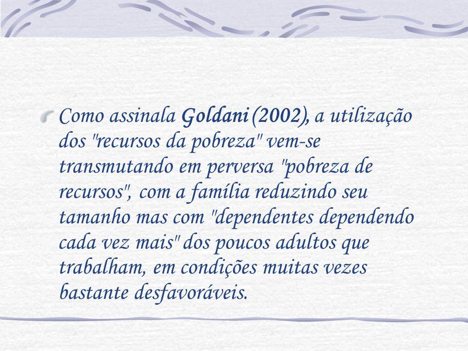 Como assinala Goldani (2002), a utilização dos