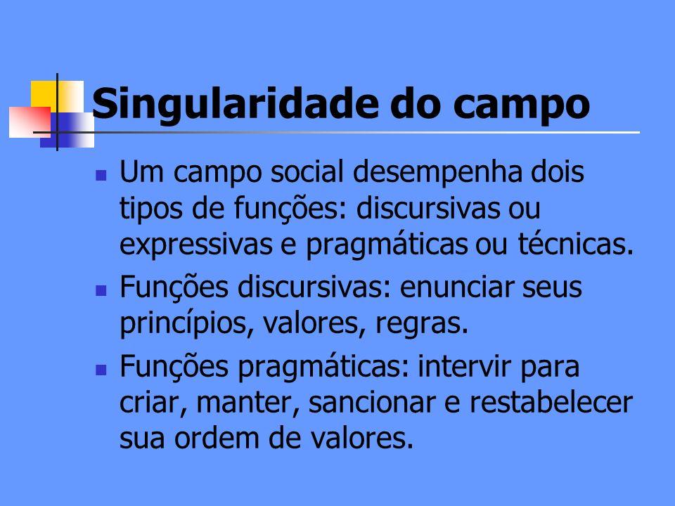 Singularidade do campo Um campo social desempenha dois tipos de funções: discursivas ou expressivas e pragmáticas ou técnicas.
