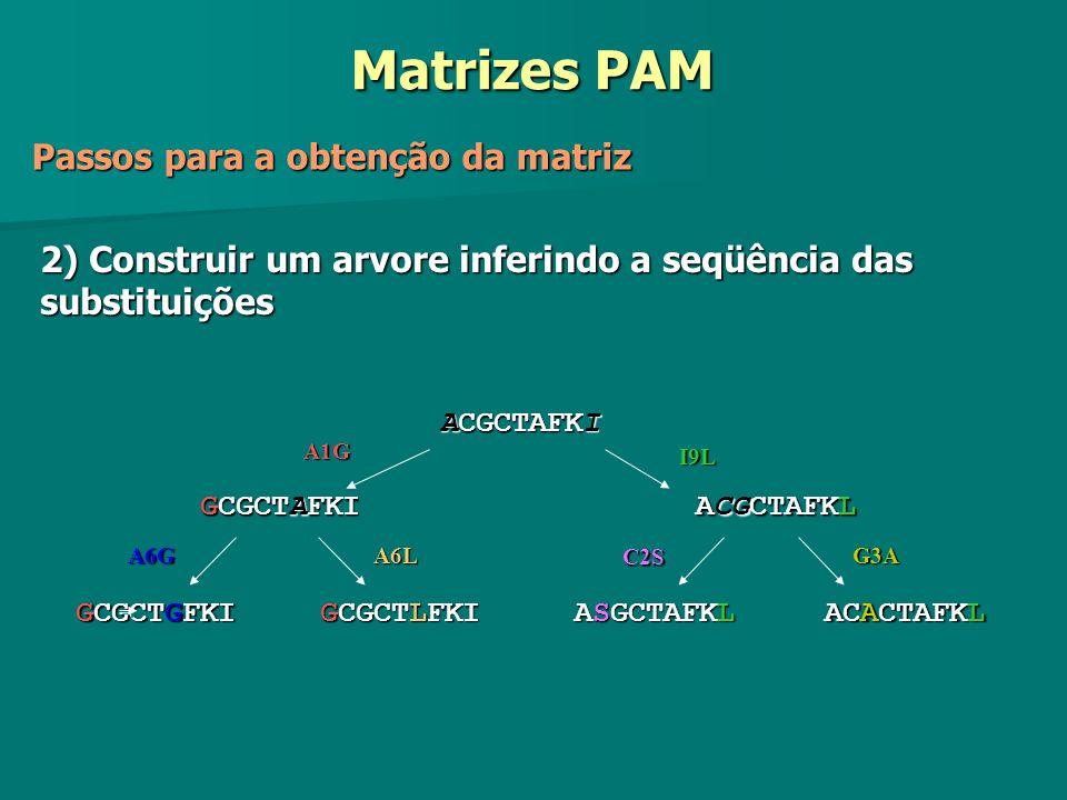 Matrizes PAM Passos para a obtenção da matriz 2) Construir um arvore inferindo a seqüência das substituições ACGCTAFKI GCGCTAFKI ACGCTAFKL GCGCTGFKI G
