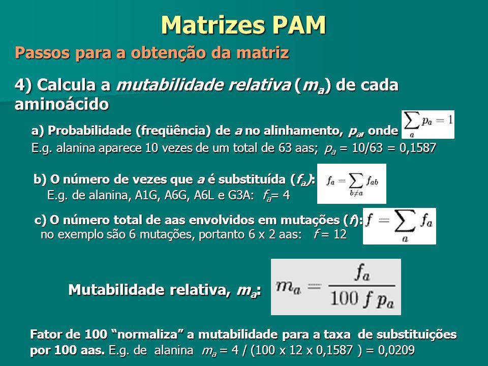 4) Calcula a mutabilidade relativa (m a ) de cada aminoácido b) O número de vezes que a é substituída (f a ): E.g. de alanina, A1G, A6G, A6L e G3A: f