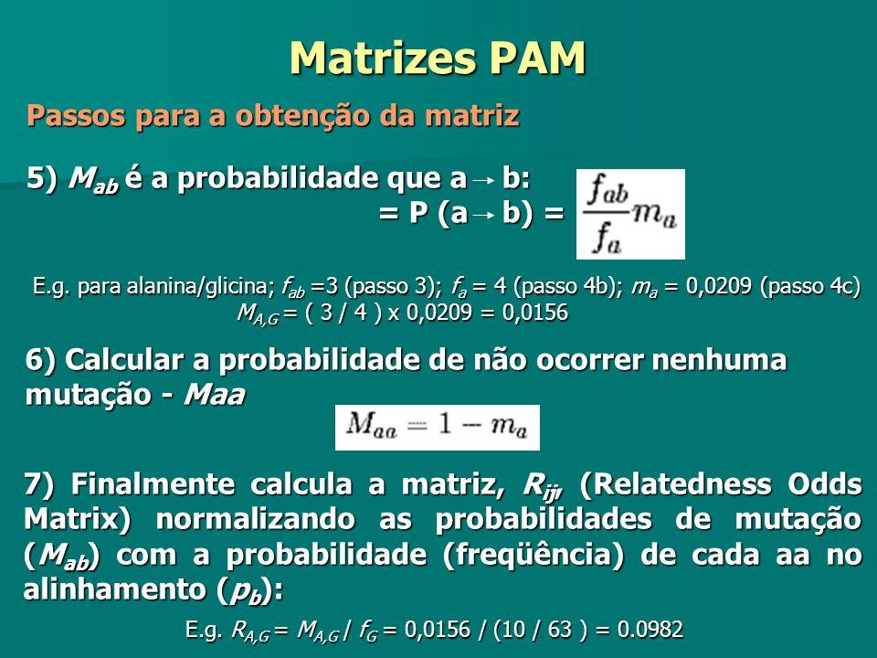 5) M ab é a probabilidade que a b: = P (a b) = 5) M ab é a probabilidade que a b: = P (a b) = E.g. para alanina/glicina; f ab =3 (passo 3); f a = 4 (p