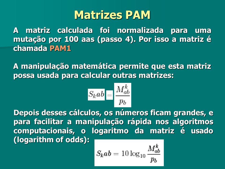 A matriz calculada foi normalizada para uma mutação por 100 aas (passo 4). Por isso a matriz é chamada PAM1 A manipulação matemática permite que esta