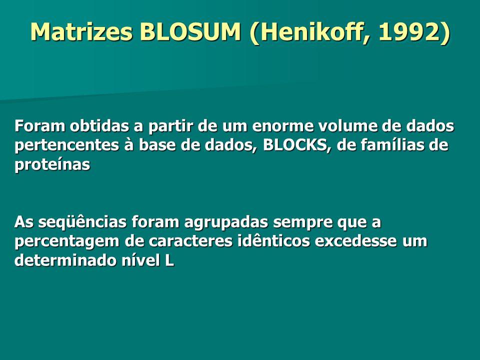 Matrizes BLOSUM (Henikoff, 1992) Foram obtidas a partir de um enorme volume de dados pertencentes à base de dados, BLOCKS, de famílias de proteínas As