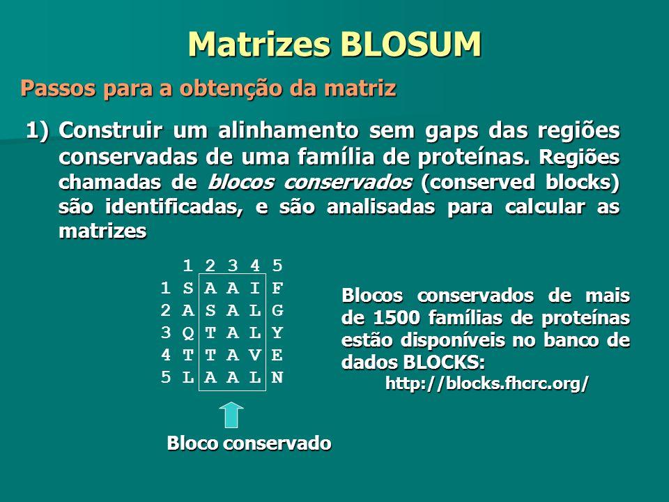Matrizes BLOSUM Passos para a obtenção da matriz 1)Construir um alinhamento sem gaps das regiões conservadas de uma família de proteínas. Regiões cham