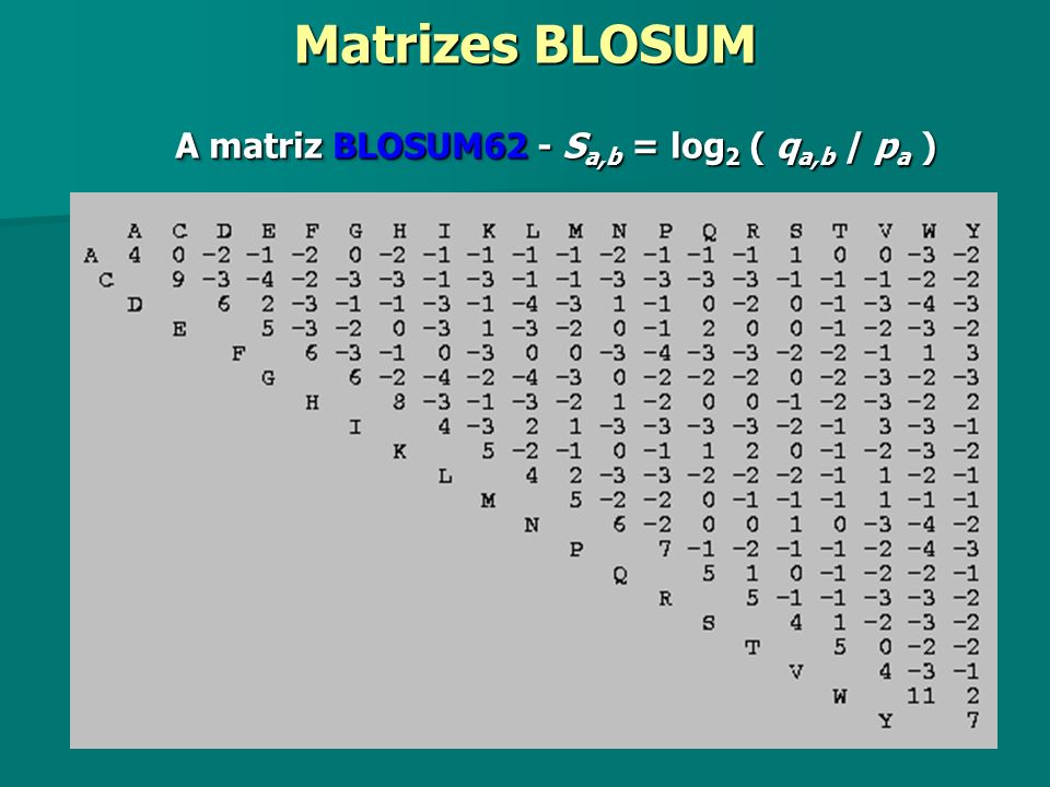 A matriz BLOSUM62 - S a,b = log 2 ( q a,b / p a ) Matrizes BLOSUM