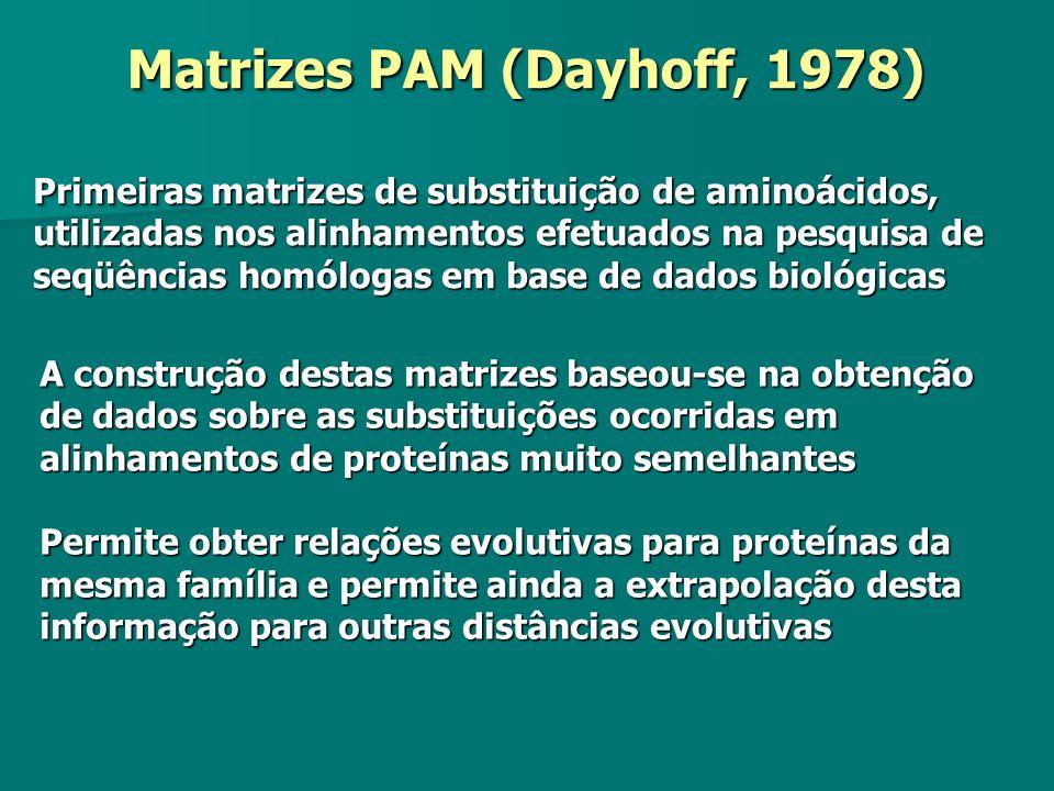 Matrizes PAM (Dayhoff, 1978) Primeiras matrizes de substituição de aminoácidos, utilizadas nos alinhamentos efetuados na pesquisa de seqüências homólo