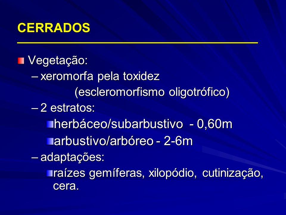 Vegetação: –xeromorfa pela toxidez (escleromorfismo oligotrófico) –2 estratos: herbáceo/subarbustivo - 0,60m arbustivo/arbóreo - 2-6m –adaptações: raí