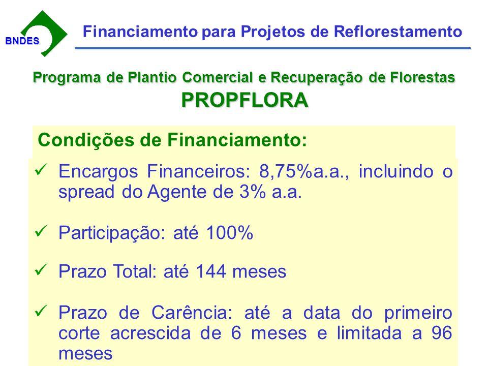 BNDESBNDES Financiamento para Projetos de Reflorestamento Condições de Financiamento: Encargos Financeiros: 8,75%a.a., incluindo o spread do Agente de 3% a.a.
