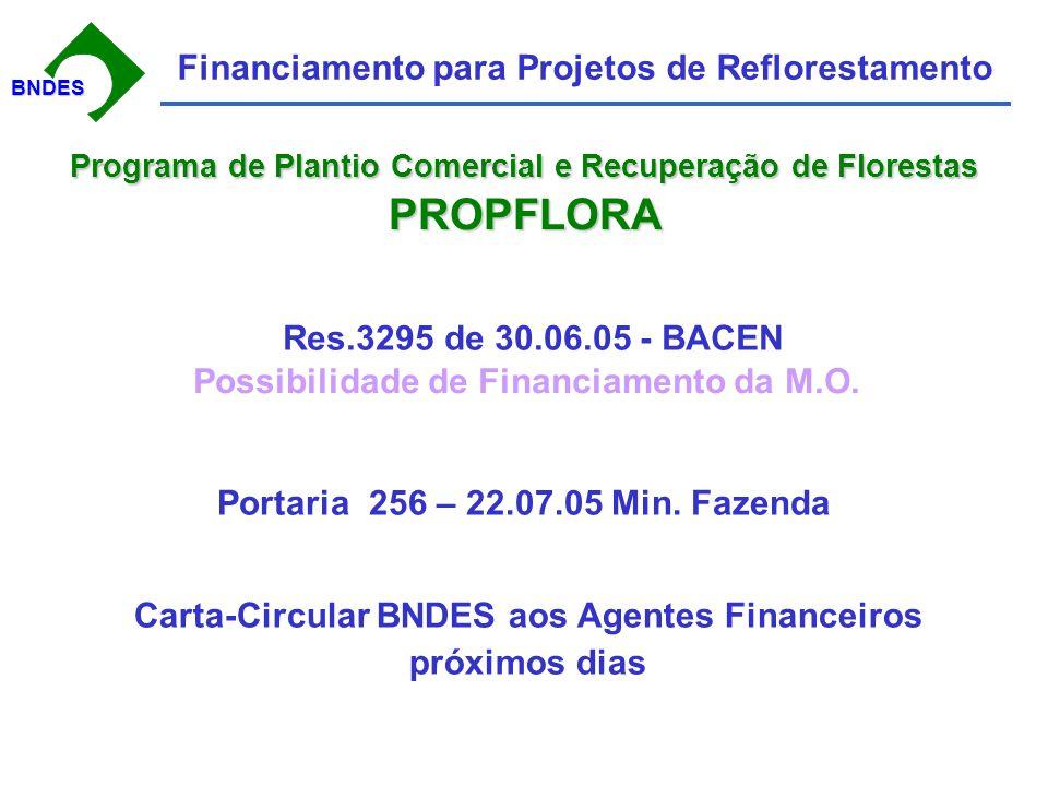 BNDESBNDES Financiamento para Projetos de Reflorestamento Portaria 256 – 22.07.05 Min.