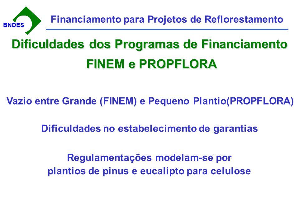 BNDESBNDES Financiamento para Projetos de Reflorestamento Dificuldades dos Programas de Financiamento FINEM e PROPFLORA FINEM e PROPFLORA Vazio entre Grande (FINEM) e Pequeno Plantio(PROPFLORA) Dificuldades no estabelecimento de garantias Regulamentações modelam-se por plantios de pinus e eucalipto para celulose
