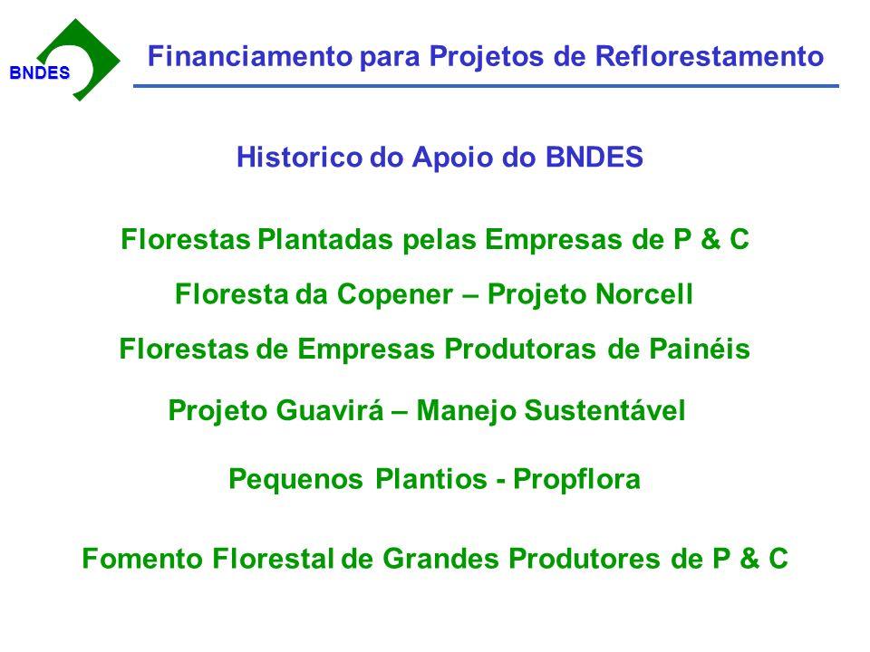 BNDESBNDES Financiamento para Projetos de Reflorestamento Historico do Apoio do BNDES Florestas Plantadas pelas Empresas de P & C Floresta da Copener – Projeto Norcell Florestas de Empresas Produtoras de Painéis Projeto Guavirá – Manejo Sustentável Pequenos Plantios - Propflora Fomento Florestal de Grandes Produtores de P & C