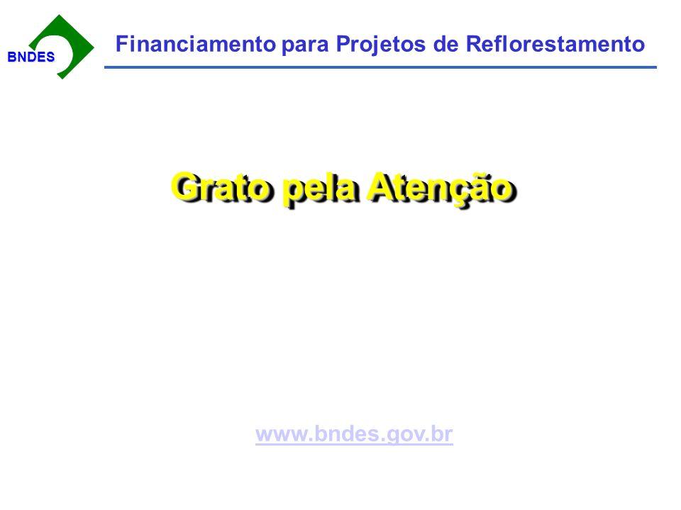 BNDESBNDES Financiamento para Projetos de Reflorestamento Grato pela Atenção www.bndes.gov.br