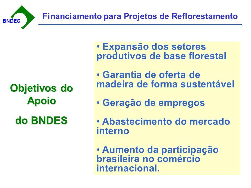 BNDESBNDES Financiamento para Projetos de Reflorestamento Desembolsos (mil R$) Programa de Plantio Comercial e Recuperação de Florestas PROPFLORA