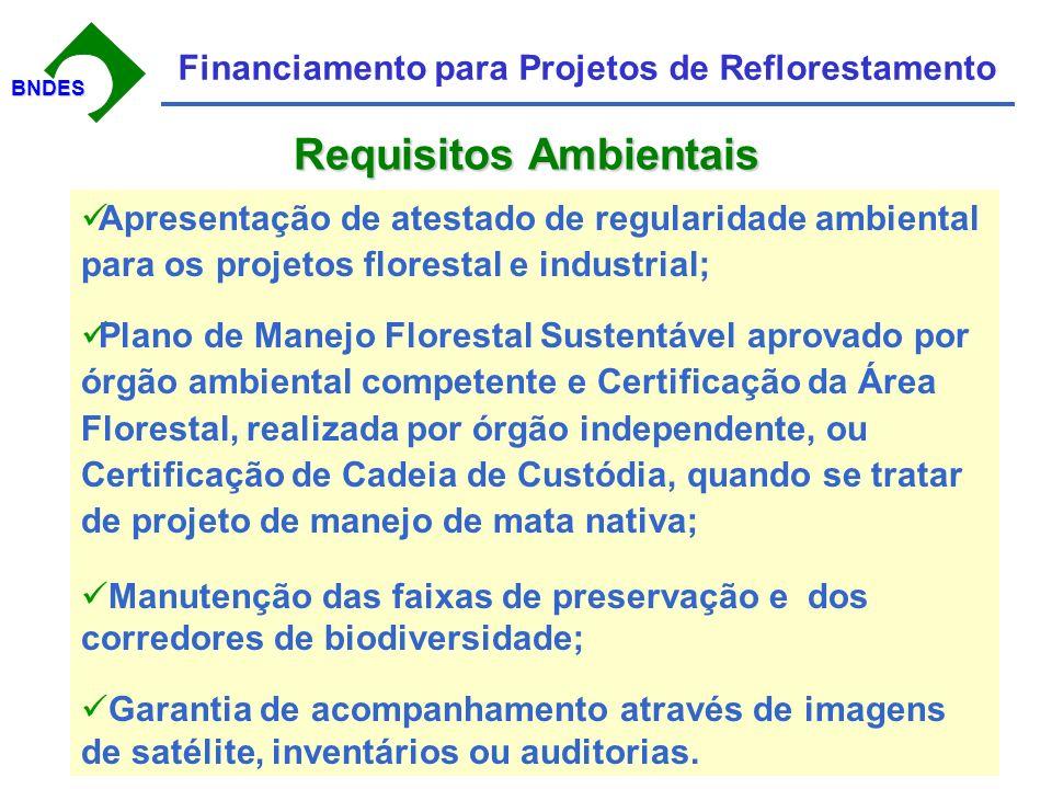 BNDESBNDES Financiamento para Projetos de Reflorestamento 12 Agentes Financeiros Atuando Os 4 Maiores com mais de 90% das Operações Espera-se grande aumento na demamda para a safra 2005-2006 Programa de Plantio Comercial e Recuperação de Florestas PROPFLORA