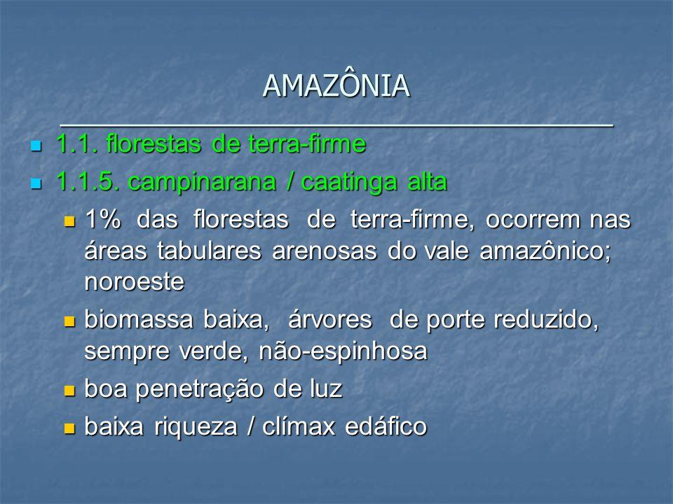 1.1. florestas de terra-firme 1.1. florestas de terra-firme 1.1.5. campinarana / caatinga alta 1.1.5. campinarana / caatinga alta 1% das florestas de