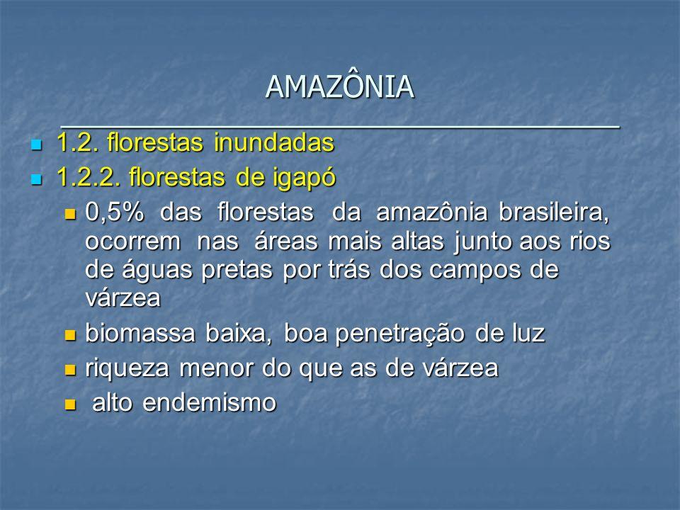 1.2. florestas inundadas 1.2. florestas inundadas 1.2.2. florestas de igapó 1.2.2. florestas de igapó 0,5% das florestas da amazônia brasileira, ocorr