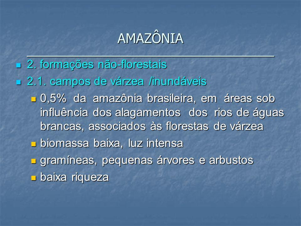 2. formações não-florestais 2. formações não-florestais 2.1. campos de várzea /inundáveis 2.1. campos de várzea /inundáveis 0,5% da amazônia brasileir