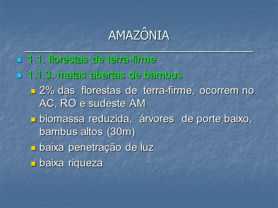 1.1. florestas de terra-firme 1.1. florestas de terra-firme 1.1.3. matas abertas de bambus 1.1.3. matas abertas de bambus 2% das florestas de terra-fi