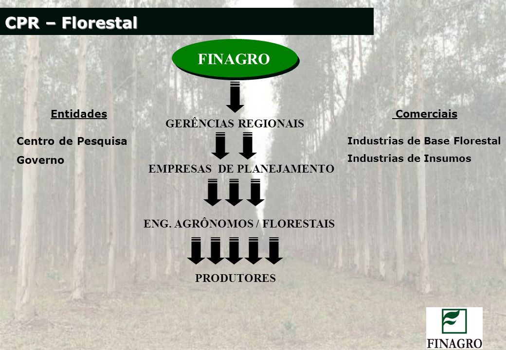 Entidades Centro de Pesquisa Governo Comerciais Industrias de Base Florestal Industrias de Insumos FINAGRO GERÊNCIAS REGIONAIS EMPRESAS DE PLANEJAMENT