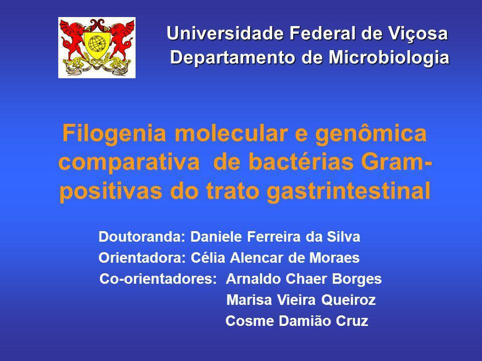 Filogenia molecular e genômica comparativa de bactérias Gram- positivas do trato gastrintestinal Doutoranda: Daniele Ferreira da Silva Orientadora: Cé