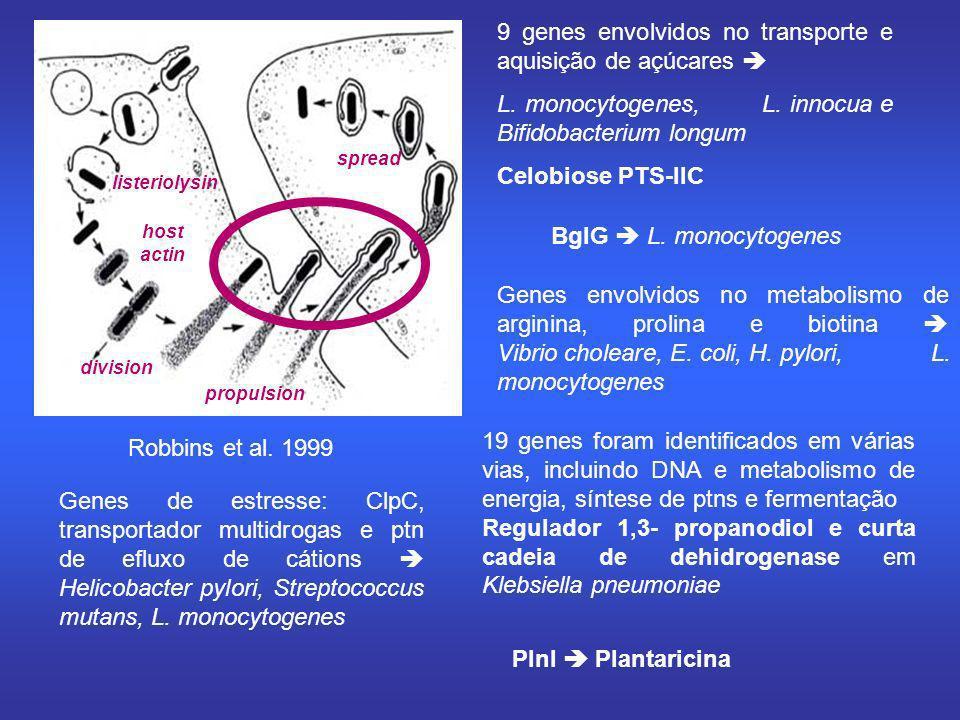 Robbins et al. 1999 listeriolysin host actin division propulsion spread 9 genes envolvidos no transporte e aquisição de açúcares L. monocytogenes, L.