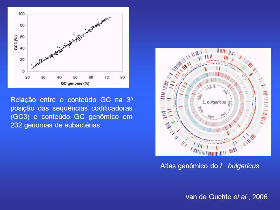 Relação entre o conteúdo GC na 3 a posição das sequências codificadoras (GC3) e conteúdo GC genômico em 232 genomas de eubactérias. Atlas genômico do