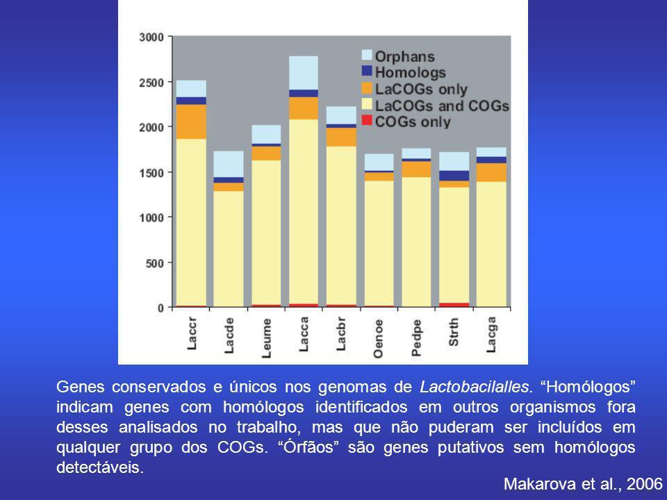 Makarova et al., 2006 Genes conservados e únicos nos genomas de Lactobacilalles. Homólogos indicam genes com homólogos identificados em outros organis