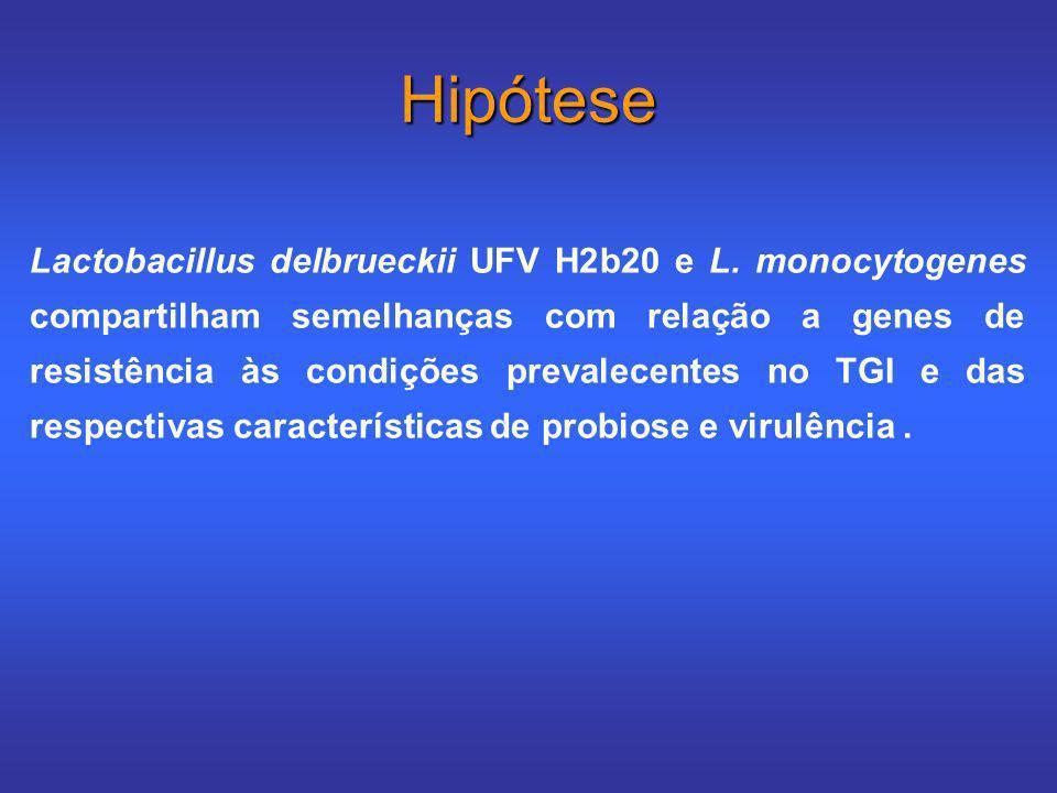 Hipótese Lactobacillus delbrueckii UFV H2b20 e L. monocytogenes compartilham semelhanças com relação a genes de resistência às condições prevalecentes