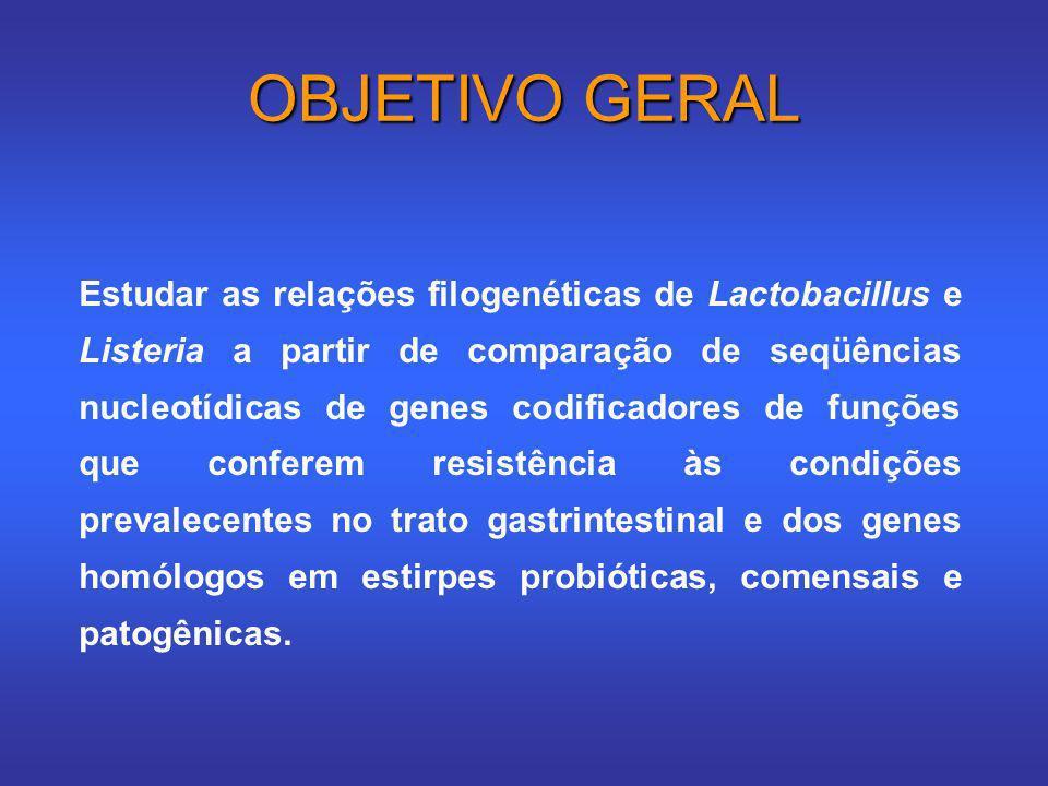 OBJETIVO GERAL Estudar as relações filogenéticas de Lactobacillus e Listeria a partir de comparação de seqüências nucleotídicas de genes codificadores