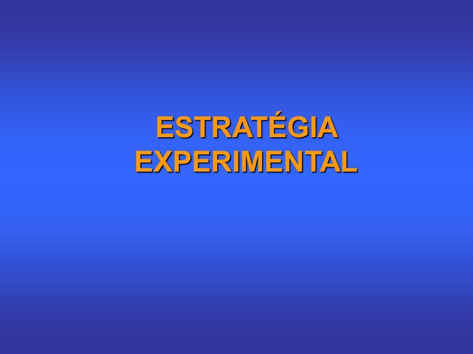ESTRATÉGIA EXPERIMENTAL