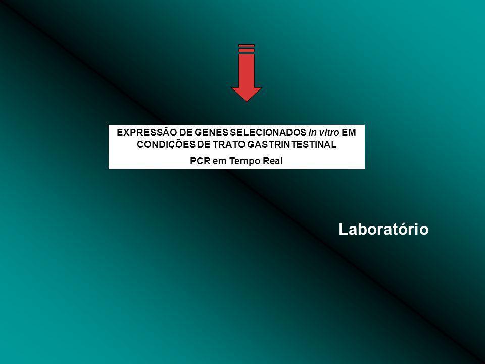 EXPRESSÃO DE GENES SELECIONADOS in vitro EM CONDIÇÕES DE TRATO GASTRINTESTINAL PCR em Tempo Real Laboratório