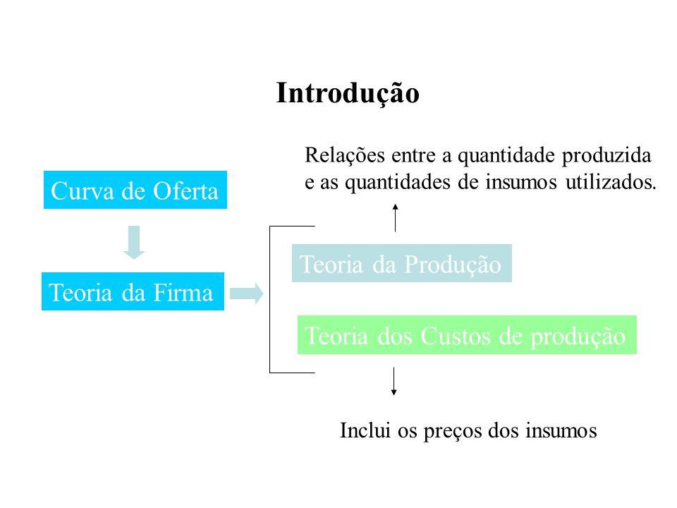 Introdução Teoria da Firma Curva de Oferta Teoria da Produção Teoria dos Custos de produção Inclui os preços dos insumos Relações entre a quantidade produzida e as quantidades de insumos utilizados.