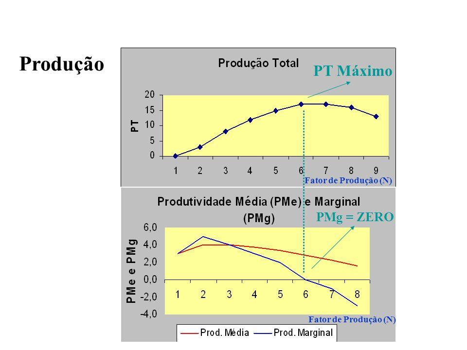 Produção PT Máximo PMg = ZERO Fator de Produção (N)
