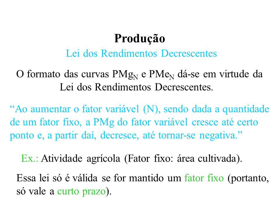 Produção Lei dos Rendimentos Decrescentes O formato das curvas PMg N e PMe N dá-se em virtude da Lei dos Rendimentos Decrescentes.