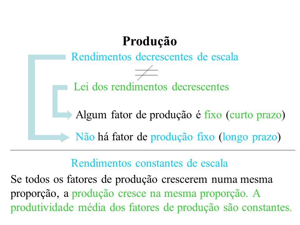 Produção Rendimentos decrescentes de escala Lei dos rendimentos decrescentes Algum fator de produção é fixo (curto prazo) Não há fator de produção fixo (longo prazo) Rendimentos constantes de escala Se todos os fatores de produção crescerem numa mesma proporção, a produção cresce na mesma proporção.