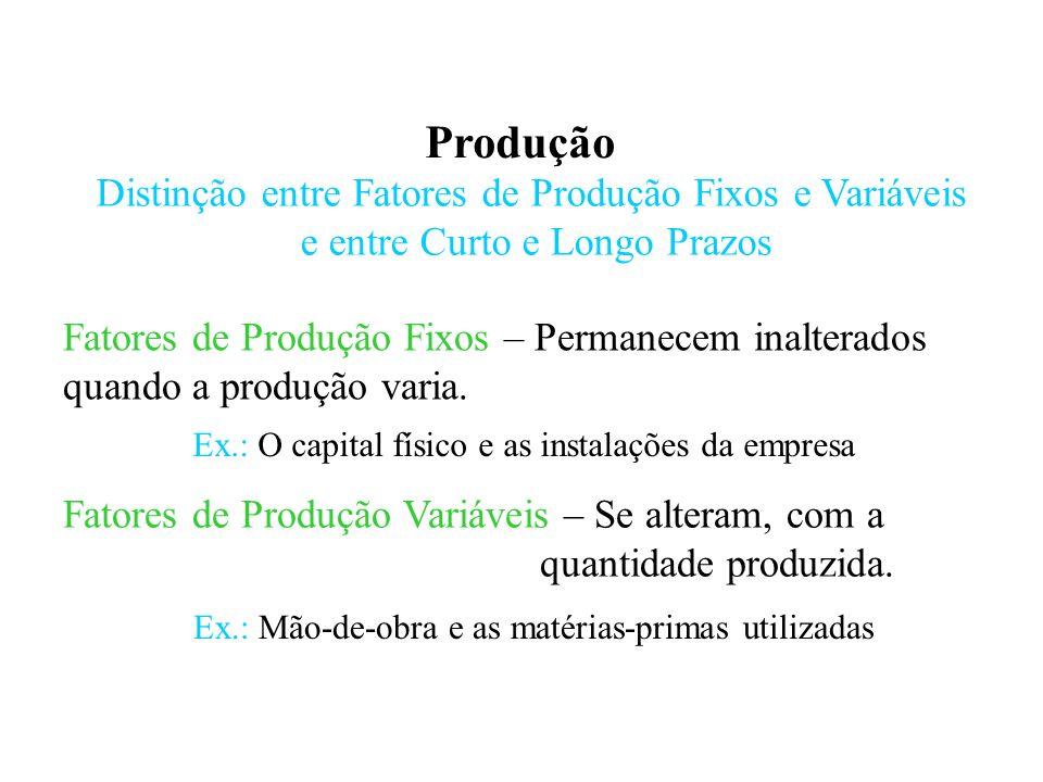 Produção Distinção entre Fatores de Produção Fixos e Variáveis e entre Curto e Longo Prazos Curto Prazo – Período no qual existe pelo menos um fator de produção fixo.
